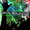 DnB/Breakbeat Live Set on Survival Soundz Radio (February 2013)