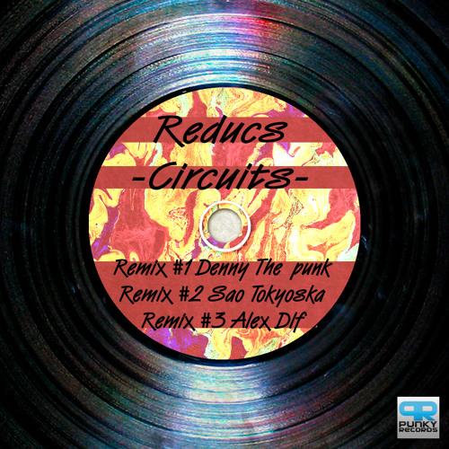 Reducs  - Circuits (Sao Tokyoska Remix)