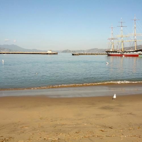 Waves at San Francisco Maritime