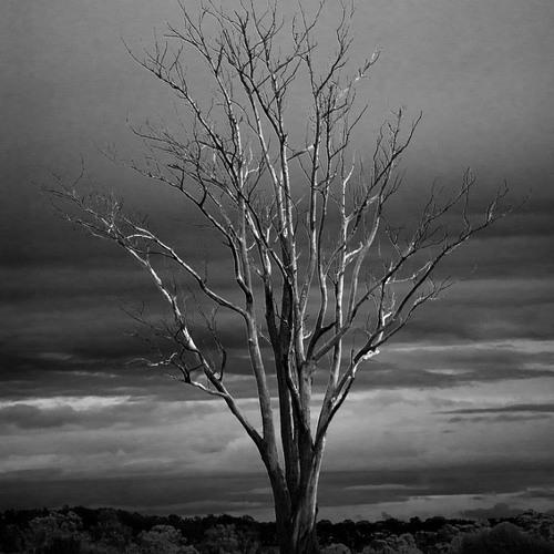 ZEITFAKTOR - The Land Of Lost Dreams