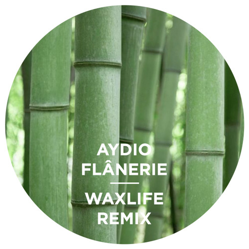 Aydio - Flânerie - Waxlife Mix