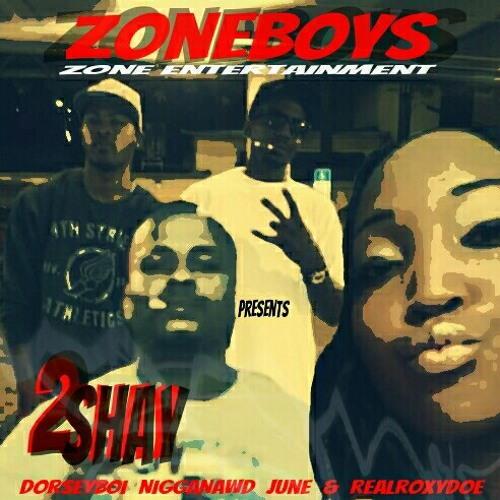 2shay  Zoneboys Official Mixtape Song... db