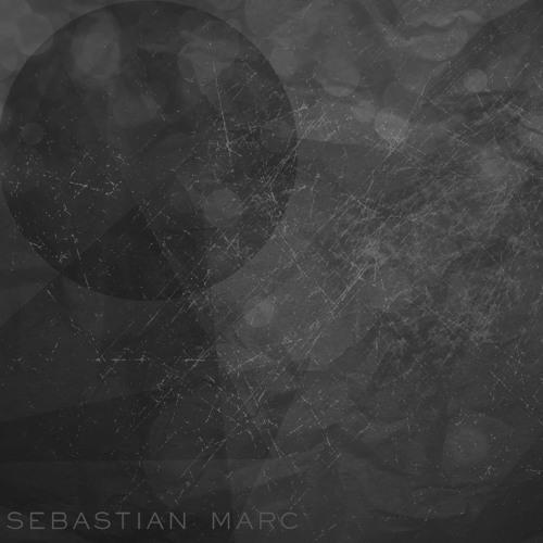 Sebastian Marc - Birds