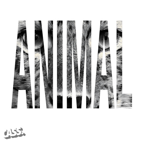 Animal / Sideman Skit