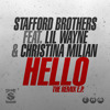 Hello ft. Lil Wayne & Christina Milian (Pleather Remix)