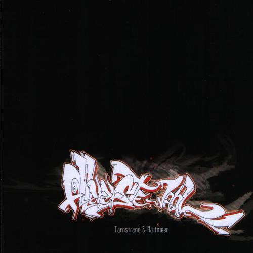 Tarnstrand & Naitmeer - Allererste Wahl (Album 2005)