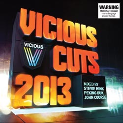 Vicious Cuts Megamix - Stevie Mink