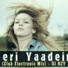 Download Teri yaadein (Club Electronic Mix )DJ NZY Mp3