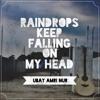 Raindrops Keep Falling on My Head - B. J. Thomas Cover