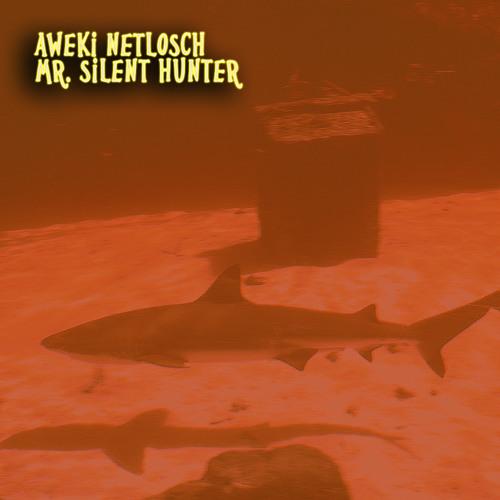 aweki - mr. silent hunter