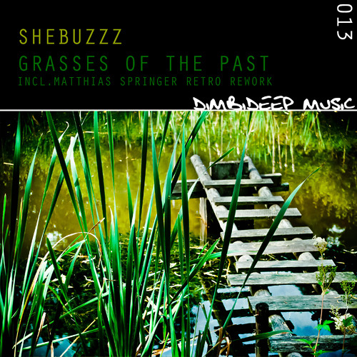 [DIMBI013] Shebuzzz - Grasses of the Past (incl. Matthias Springer Retro Rework)
