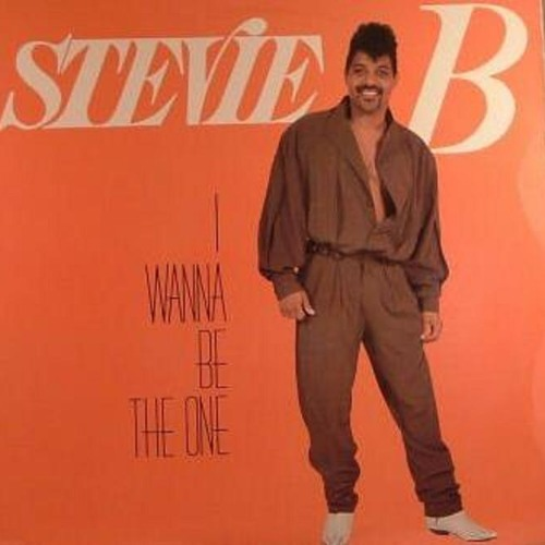 Stevie B - I Wanna Be The One (Silvers Morning Wood Remix)
