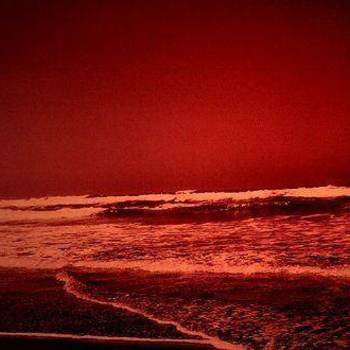 Ocean Vino