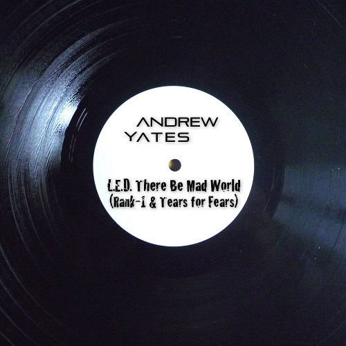 Rank 1 ft. Tears For Fears - L.E.D. There Be Mad World [Andrew Yates Mashup]