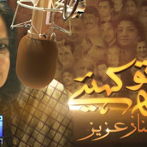 Round Table - Shahnaz Aziz - Urdu VOA February 09 2013
