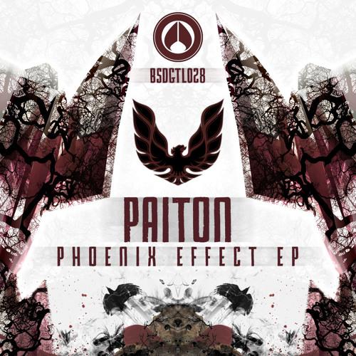 Paiton - Phoenix Effect [cut] - BSDGTL028