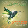 Xavier Rudd - Spirit Bird (Dee Cue Edit)