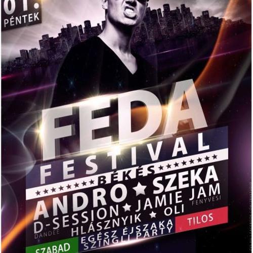 Feda Festival rádió reklám 2013.03.01., péntek.
