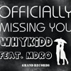 Officially Missing You Remix