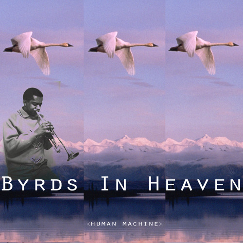 Human Machine - Byrds in Heaven - Love Our Records