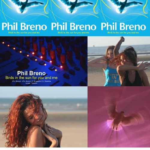 PHIL BRENO birds in the sun for you and me robot remix