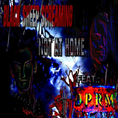 BLACK SHEEP SCREAMING feat. DPRM - NOT AT HOME (2013)