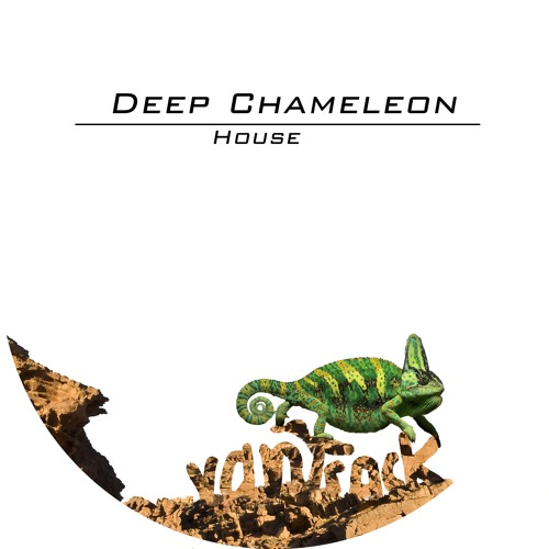 DeepChameleonHouse