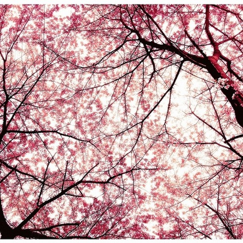 FREE DOWNLOAD: Andrew Parsons & Alakai - Cherry Blossom (Original Mix)