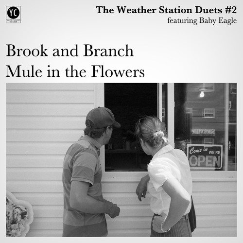 The Weather Station featuring Baby Eagle - Mule In The Flowers