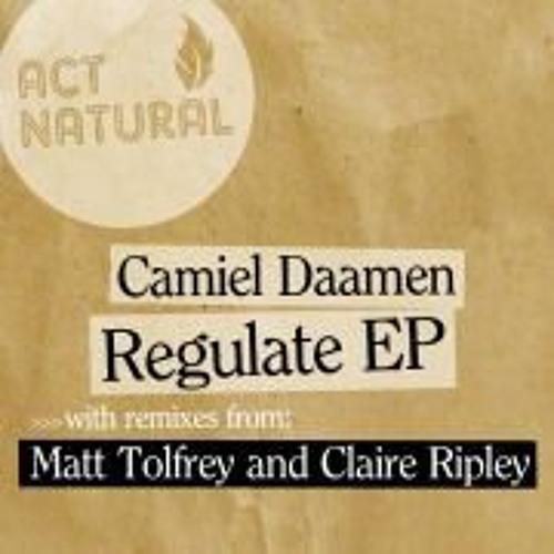 Camiel Daamen Feat Mairead Regulate Original mix