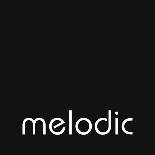 Ripperton @ Melodic Dublin - Jan '13