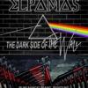 Elpamas - Comfortably Numb (Pink Floyd Cover)