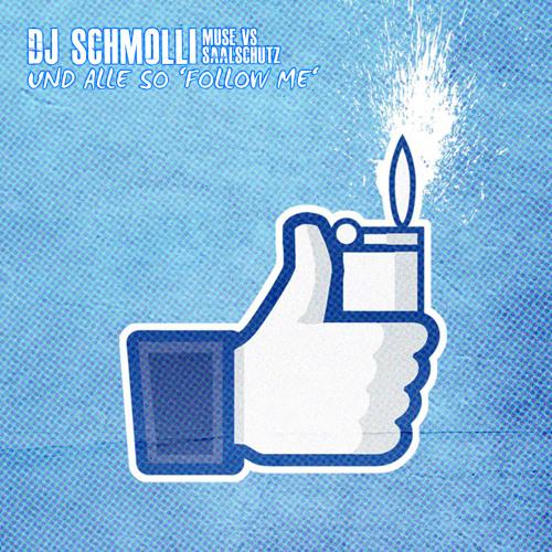 DJ Schmolli - Und alle so 'Follow Me'