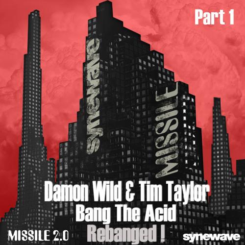 """DAMON WILD + TIM TAYLOR   """"BANG THE ACID - REBANGED!"""" PART ONE - MIXES 1 - 6 OF 12"""