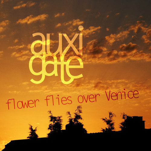Flower flies over Venice (Original mix)
