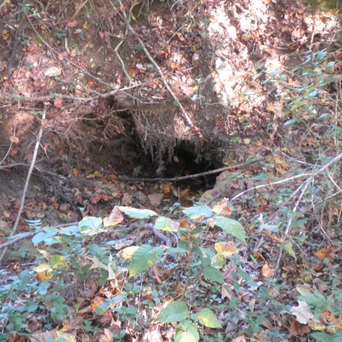 Hole Down In The Ground