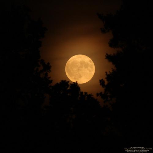 Moon STBB #310