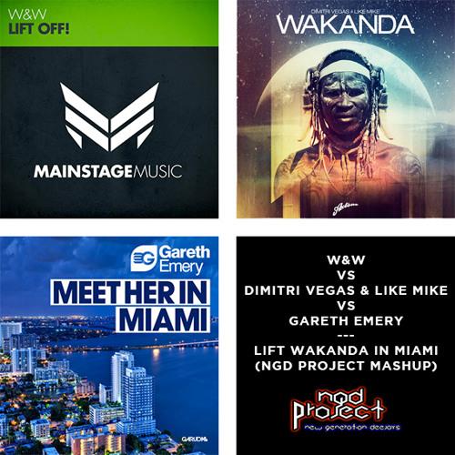 W&W VS Dimitri Vegas & Like Mike VS Gareth Emery - Lift Wakanda in Miami (NGD Project Mashup)
