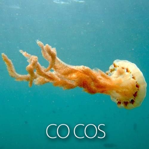 Co Cos - Coffee