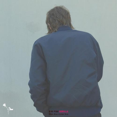 "White Fence - ""Pink Gorilla"""