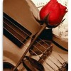 Hendri Lamiri (Violin Instrument) - With Love