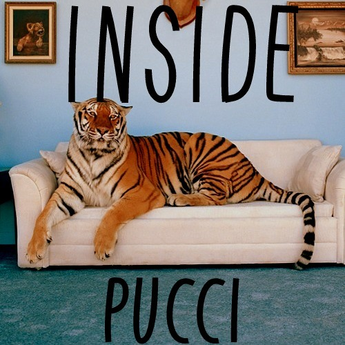 PUCC!- INSIDE
