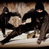 If I Was Your Ninja - Ninja Parody of Justin Bieber - Boyfriend