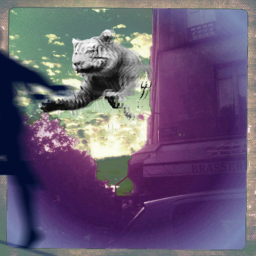 Loki Starfish - D.I.W (Do It Wanker remix by Louise Roam)