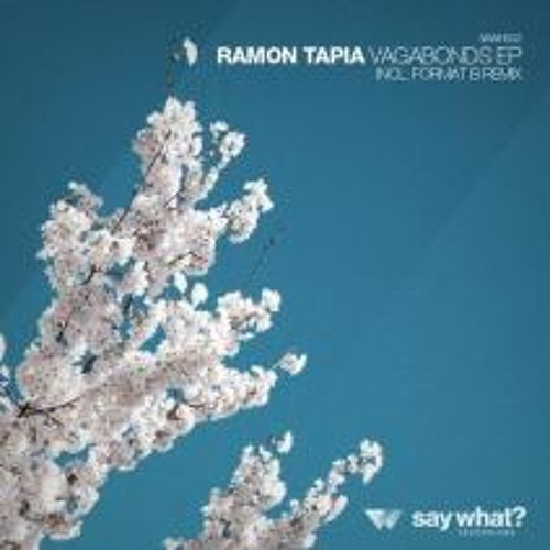"Ramon Tapia ""Vagabonds"" Format:B Remix Say What Records"