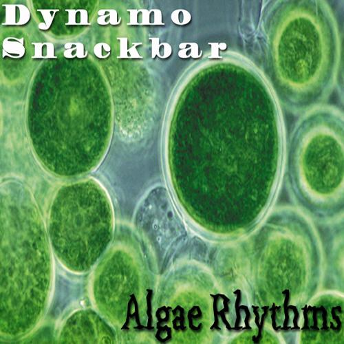 Algae Rhythms