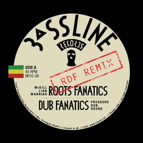 DFS [Rootikal Dub Foundation] Feat Mr Dill Lion Warriah - Roots Fanatics RMX Vocal