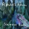 Alphabets Heaven
