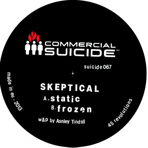Skeptical - Static