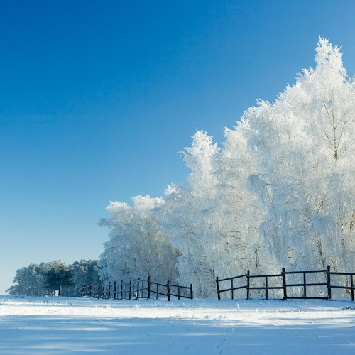 Winter's Burst